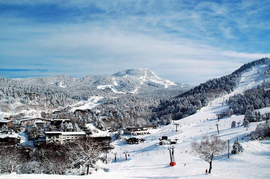 Страна восходящего солнца – снежный Клондайк!