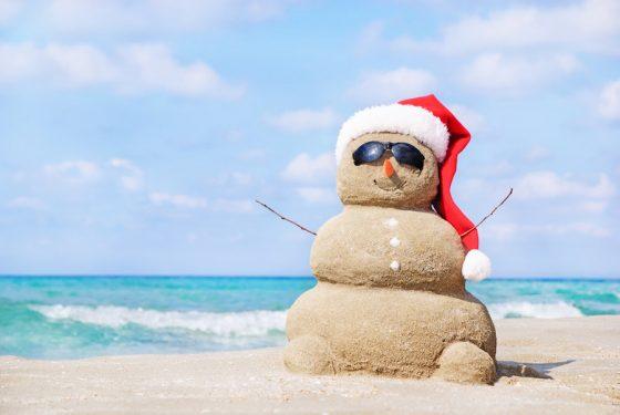 Самые необычные рождественские каникулы