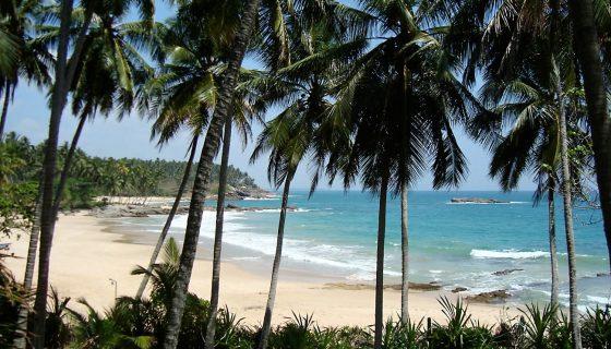 Пляж Шри-Ланки